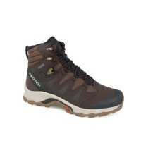 Ботинки SALOMON QUEST WINTER GTX (L399723)