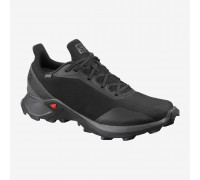 Кроссовки SALOMON Alphacross GTX (L40805100)